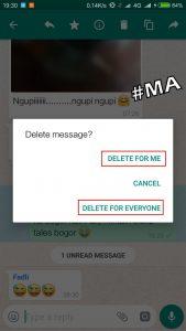 Versi Whatsapp Mengembalikan Pesan 6