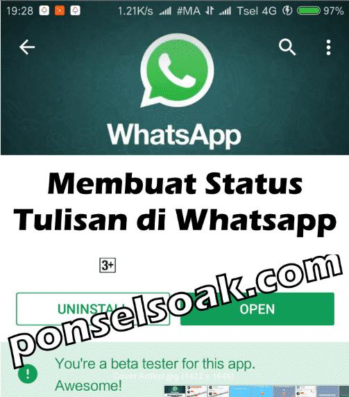 Cara Membuat & Update Status Tulisan di WhatsApp Berwarna Keren