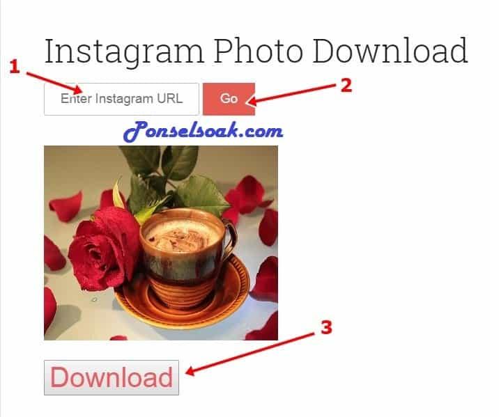 Cara Download Gambar dengan Dinsta 2