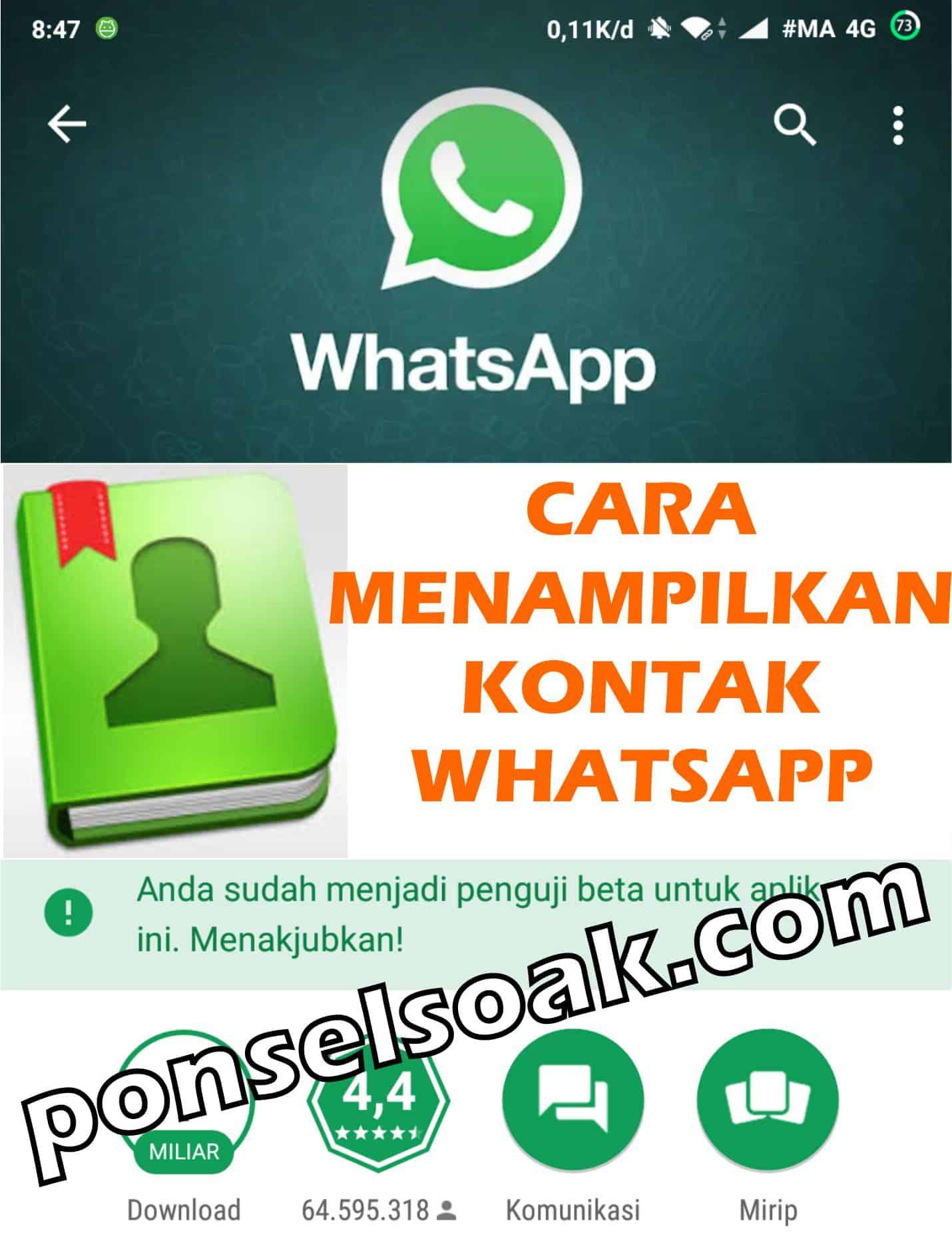 2+ Cara Menampilkan Kontak WhatsApp Yang Tidak Muncul (Hilang)