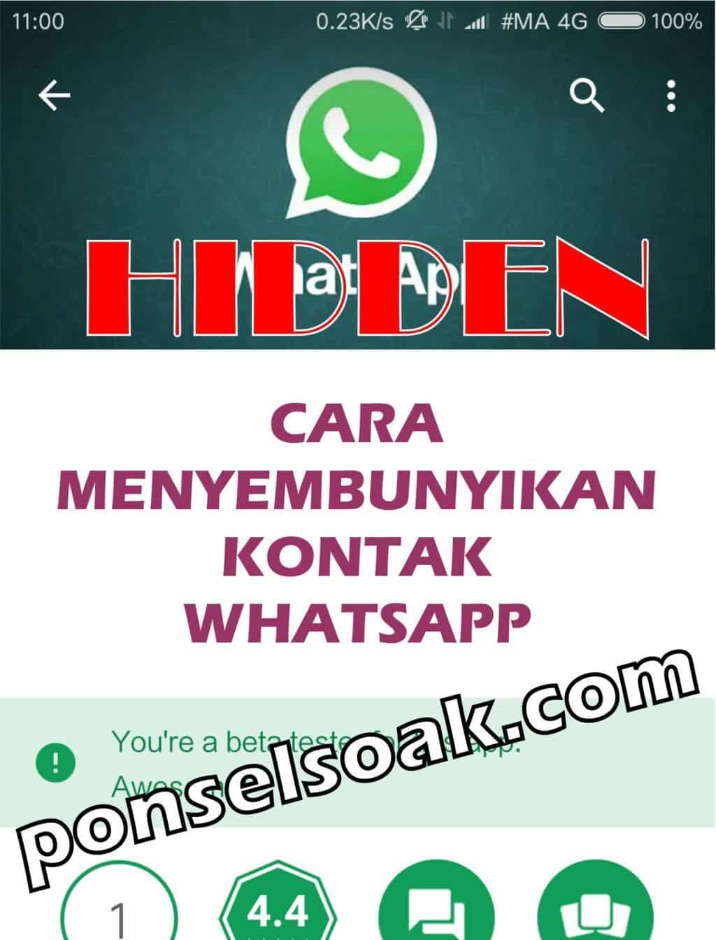 Cara Menyembunyikan Kontak Whatsapp
