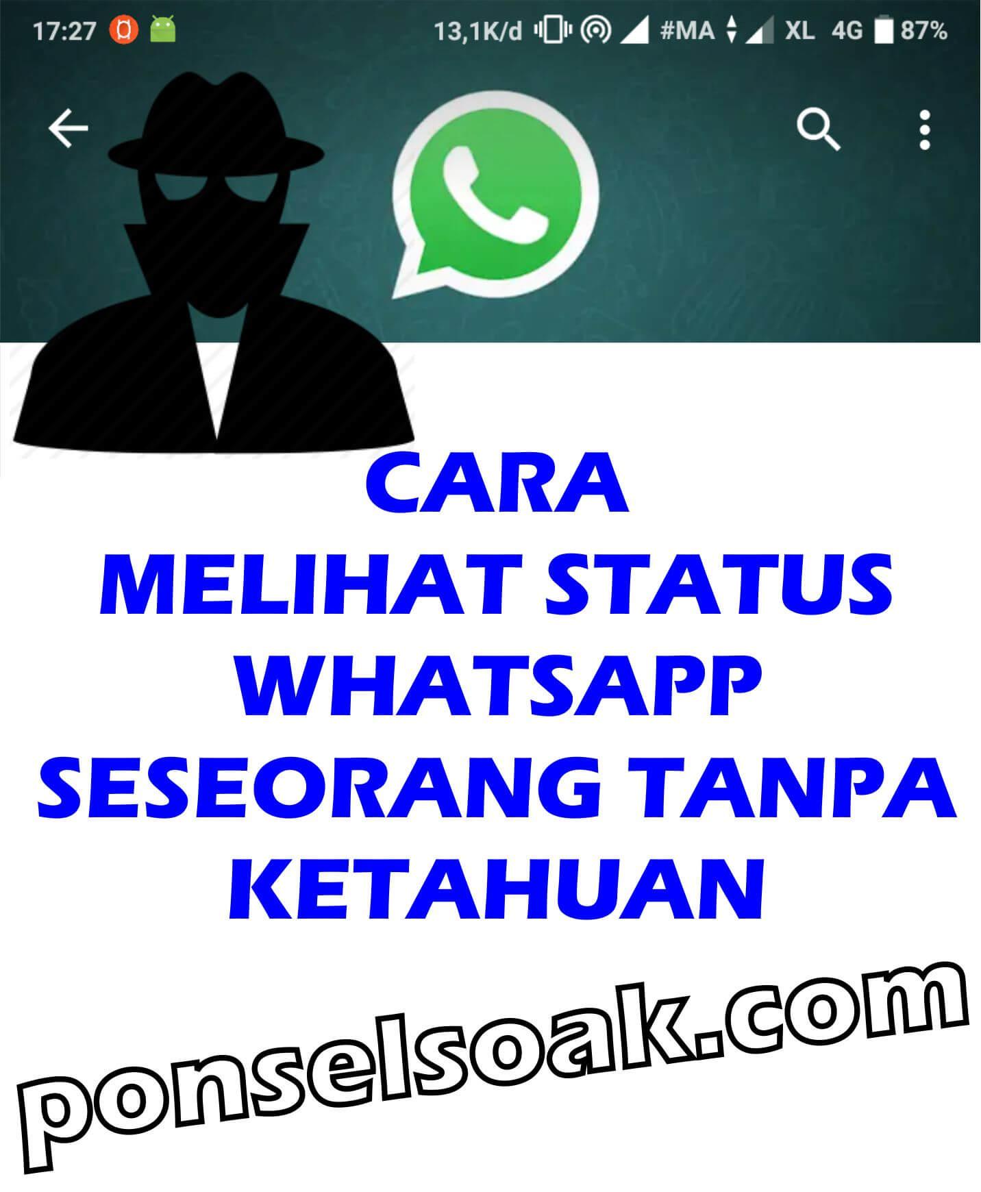 3+ Cara Melihat Status WhatsApp Seseorang Tanpa Ketahuan
