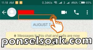 Cara Membuka Whatsapp yang Diblokir Teman 12
