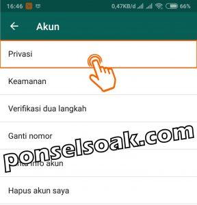 Cara menghilangkan last seen dan centang biru read di WhatsApp 3