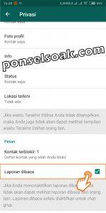 Cara menghilangkan last seen dan centang biru read di WhatsApp 6