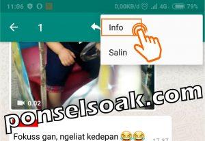 Cara menyembunyikan or menghilangkan status online di whatsapp ketika online 9