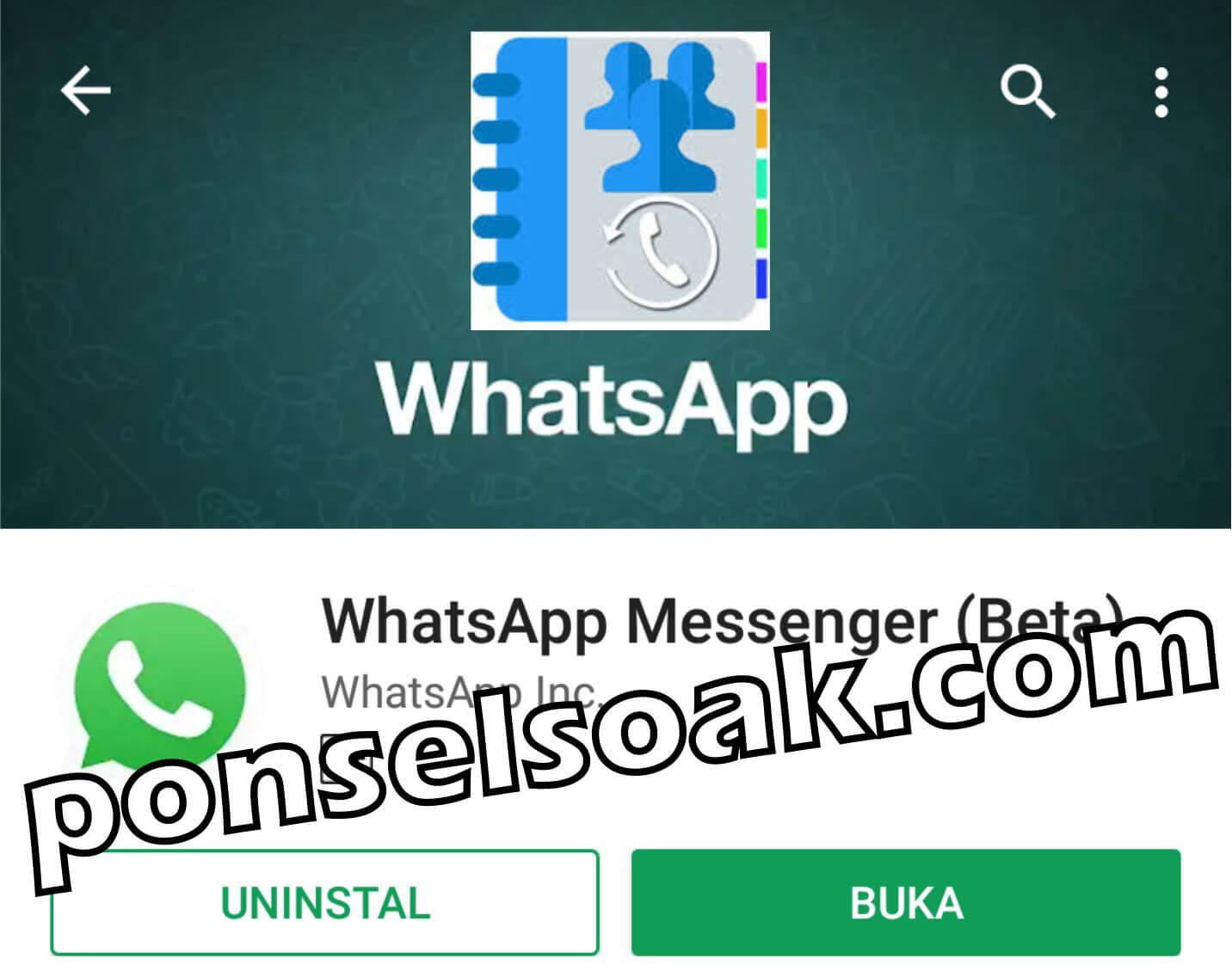 4+ Penyebab & Cara Mengatasi Kontak WhatsApp Hilang Dan Tidak Muncul