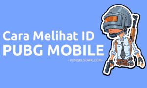 Cara Melihat username dan ID PUBG Mobile Terbaru
