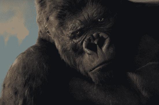 nah kami berikan deretan film Petualangan terbaik yang ada dipasaran saat ini 50+ Film Petualangan Terbaik
