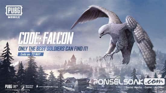Tempat dan Cara Mendapatkan Burung Falcon di PUBG Mobile