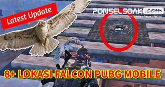 8+ Tempat Burung Falcon di PUBG Mobile